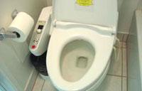 toilet21.jpg